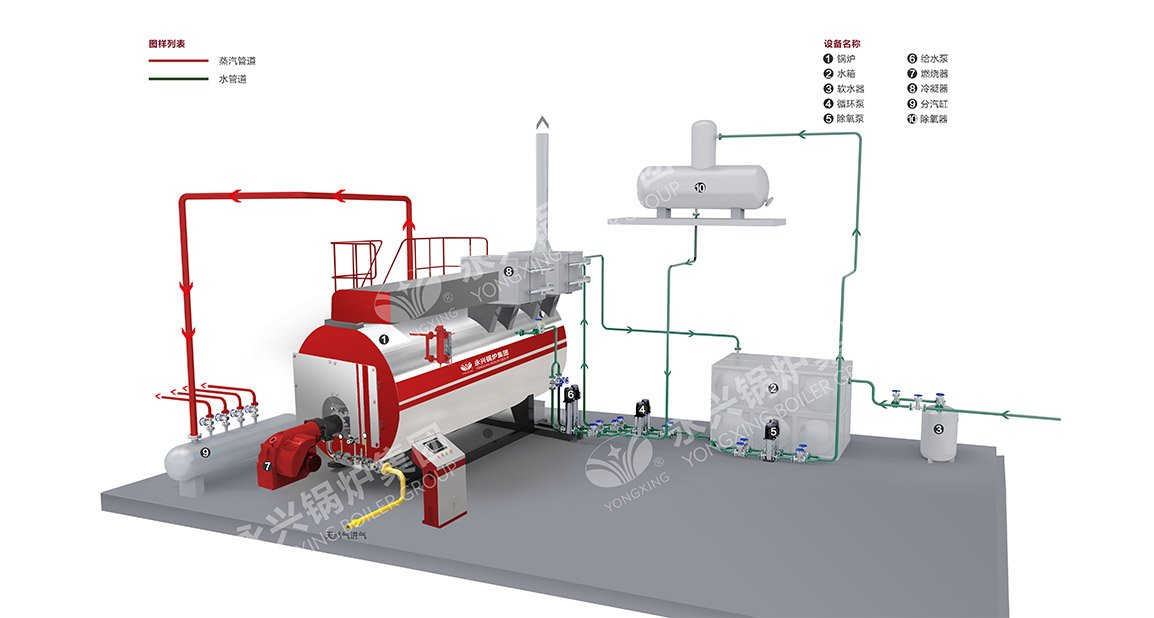 WNS oil gas boiler system