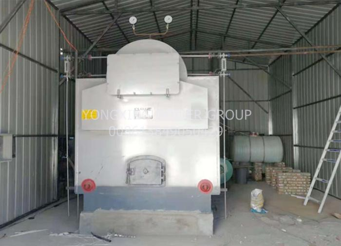 DZH 4ton industrial wood fired steam boiler (equipped moving grate and economizer)