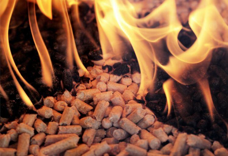 Peanut shell briquetting boiler Sawdust Fired Steam Boiler industrial biomass boiler cost