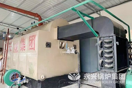 2T Biomass Wood Chips Fired Steam Boiler with Chain Grate Stoker Low Pressure