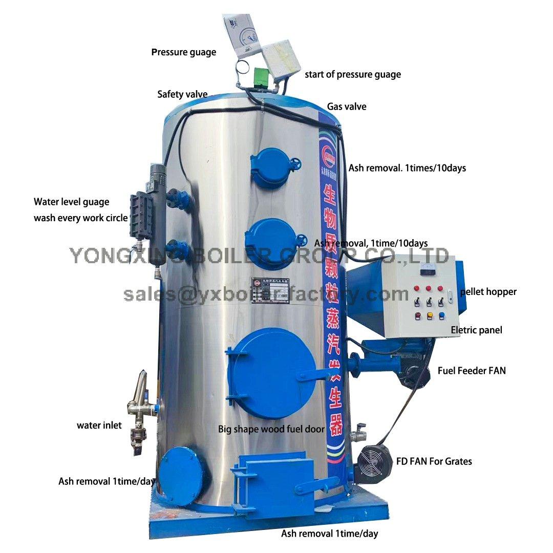 LHG coal biomass steam generator