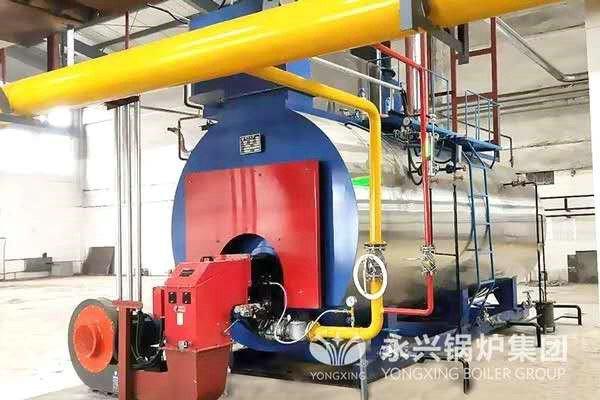 condensing steam boiler