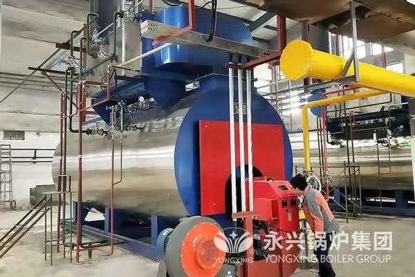 gas condensing steam boiler