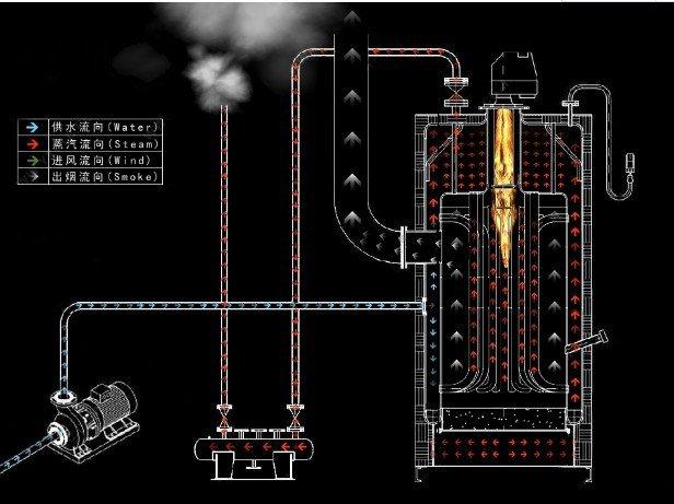 vertical boiler circulation